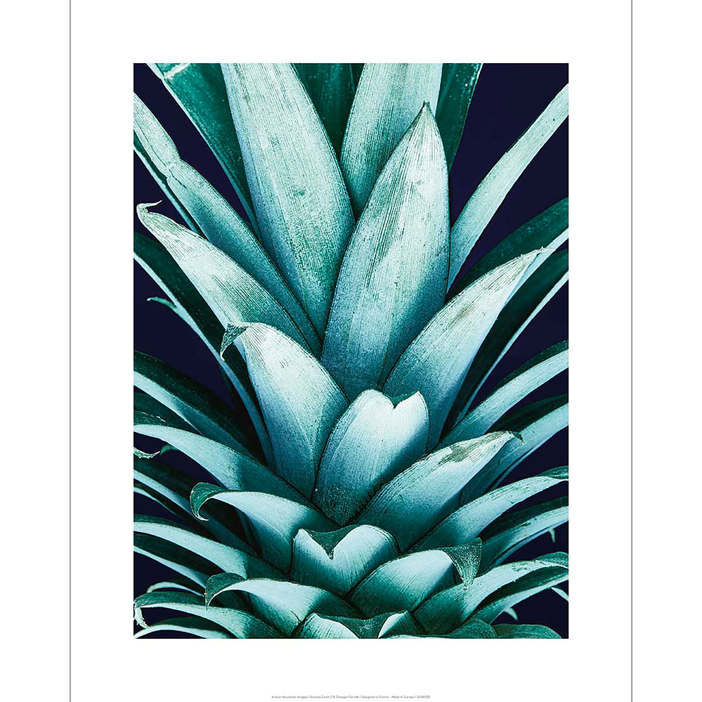 img-Affiche tube zoom ananas 40x50