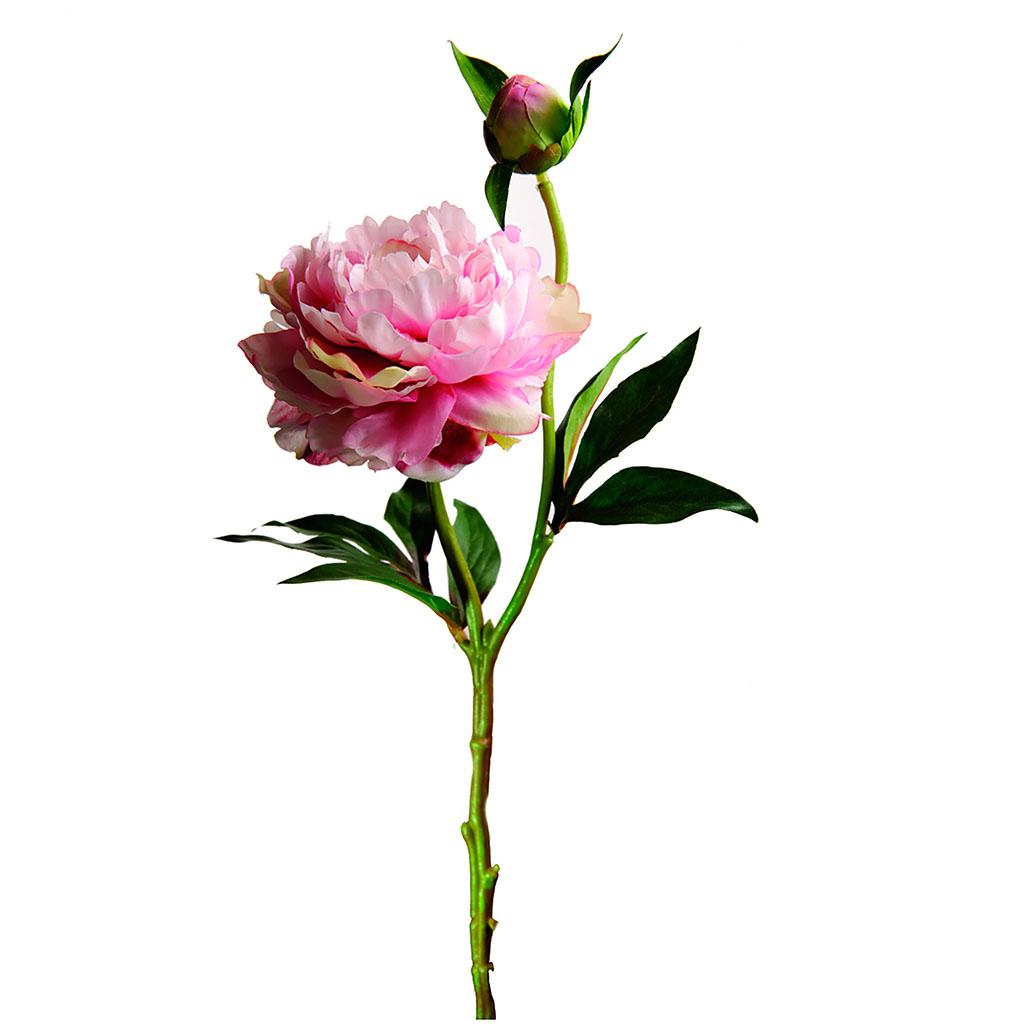 Sia - Fleur pivoine rose h36cm polyester plastique fil de fer