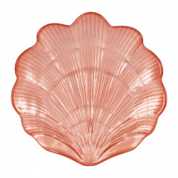 img-Plat galease corail d21