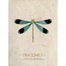 img-Woodprint 30x40cm paper dragonfly green peuplier