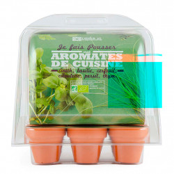 img-Mini serre 6 pots pet aromatique bio