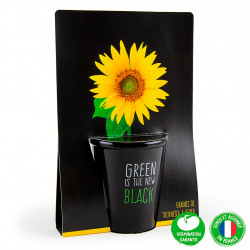 "img-Pot black ""green is the new black""- tournesol"