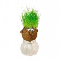 img-Mr green sur vase
